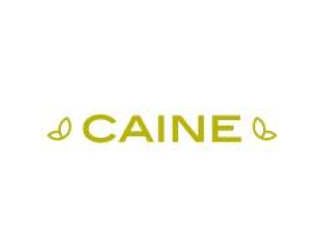 Caine Real Estate