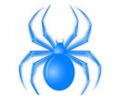 Blue Spider Car Rental