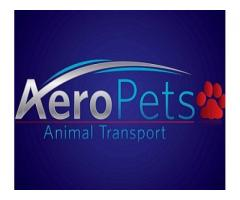 AeroPets Animal Transport