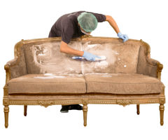Fresh Upholstery Cleaning