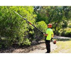DMS Tree Company – Tree Removals Melbourne
