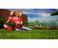 Lawn & Garden Care - Landscaping Melbourne